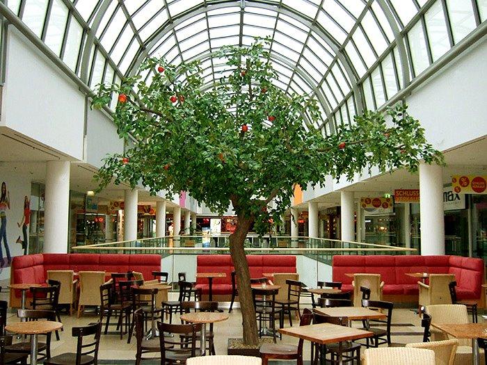 apfelbaum k lner arcaden von hadjisky dekopflanzen. Black Bedroom Furniture Sets. Home Design Ideas