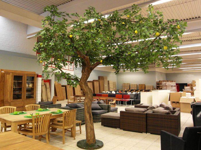 zitronenbaum. Black Bedroom Furniture Sets. Home Design Ideas